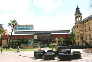 Adelaide Accommodation - South Australian Museum